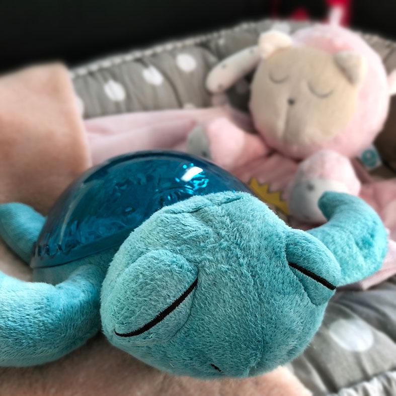 magic-turtle